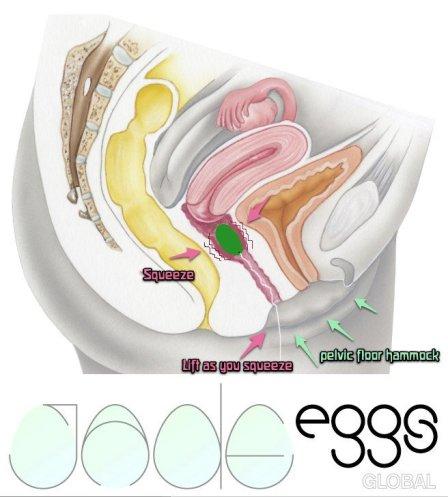 yoni-eggs-0002480750_10